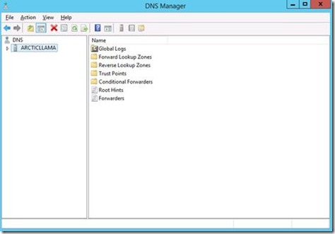 6_WinServer2012_DNSManager_w_450